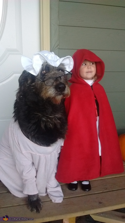 Red and Grandma Homemade Costume
