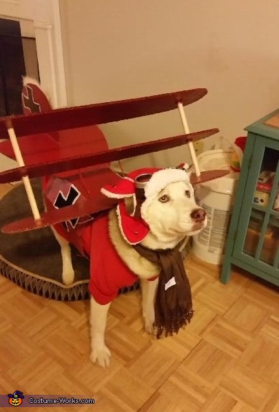 Red Baron Costume