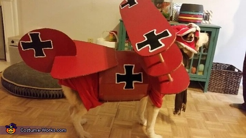 Red Baron Dog Homemade Costume
