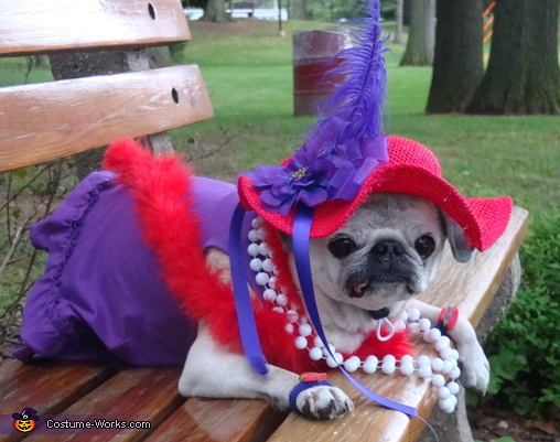 Red Hat Society Costume
