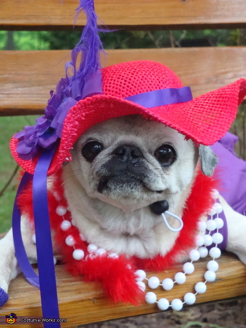 """Make sure you get a close up"", Red Hat Society Costume"
