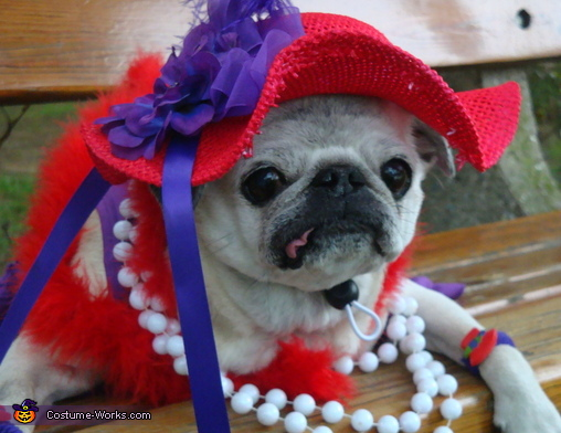 """""""Take some more pictures"""", Red Hat Society Costume"""