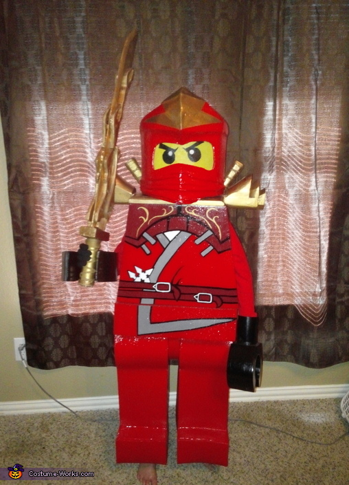 Lego Ninjago Red Ninja Costume