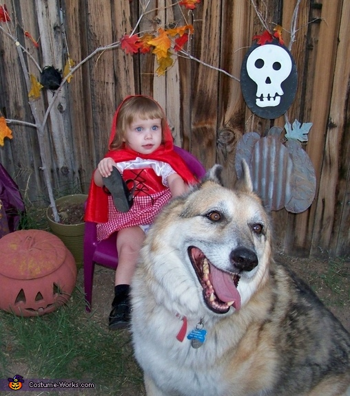 Red and the big bad wolf, Cutest Little Red Riding Hood Costume