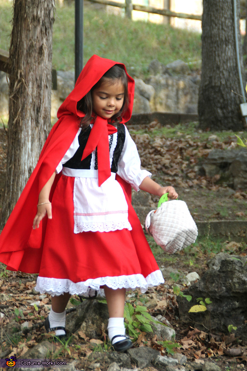 on my way to grandma's, Red Riding Hood and Big Bad Wolf Costume