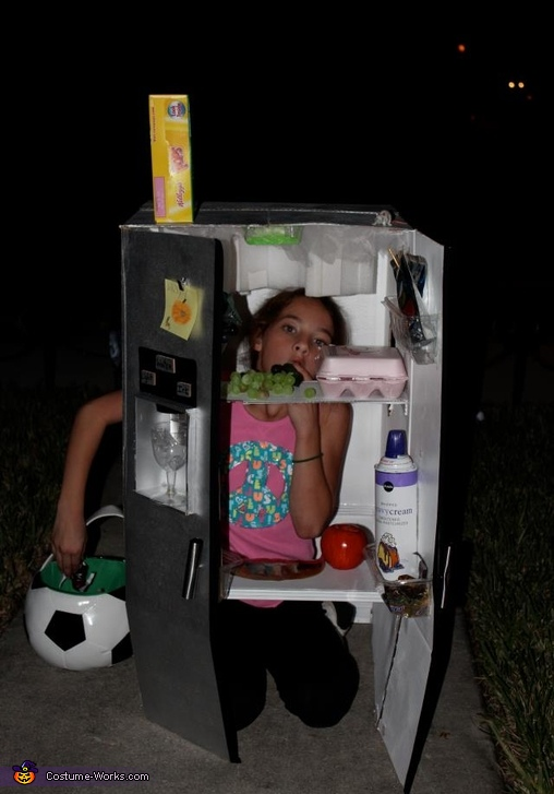 Refrigerator - Homemade costumes for girls