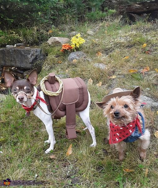 Ride 'em Cowgirl Costume