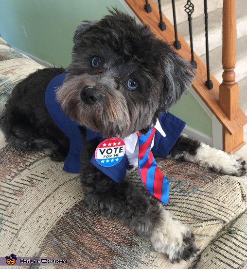 Riley for President Costume