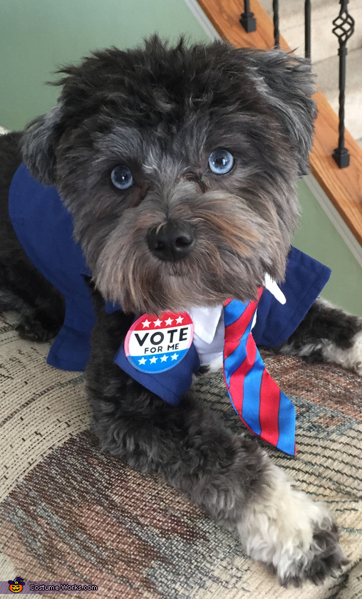 Riley for President Homemade Costume