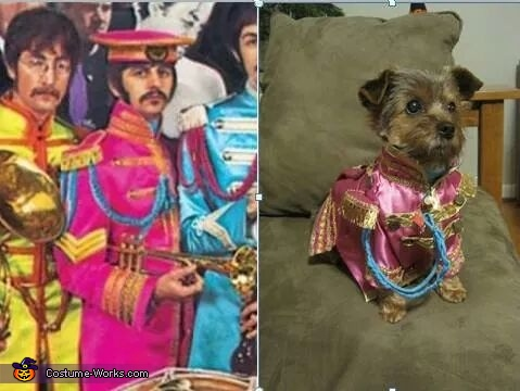 Sgt. Pepper's Lonely Hearts Ringo Homemade Costume