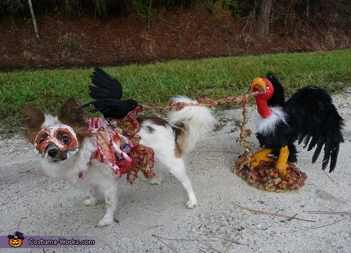 Roadkill Zombie Dog - Homemade costumes for pets