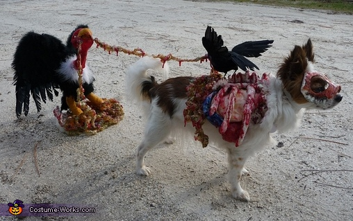 Roadkill Zombie dog full costume seen from right side, Roadkill Zombie Dog Costume