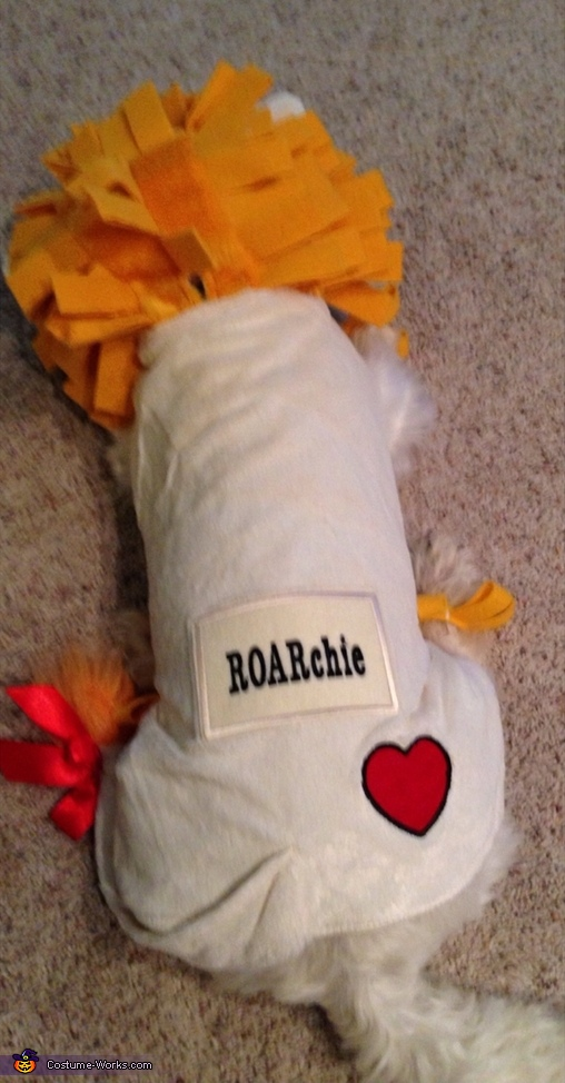 ROARchie Homemade Costumes for Dogs