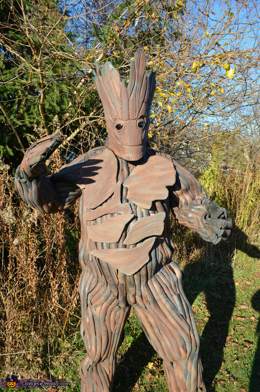 Groot, Guardians of the Galaxy - Rocket Raccoon & Groot Costume
