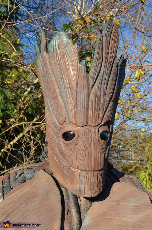 Groot Head, Guardians of the Galaxy - Rocket Raccoon & Groot Costume