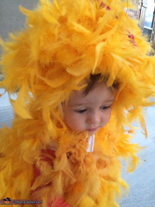 DIY Rooster Baby Costume
