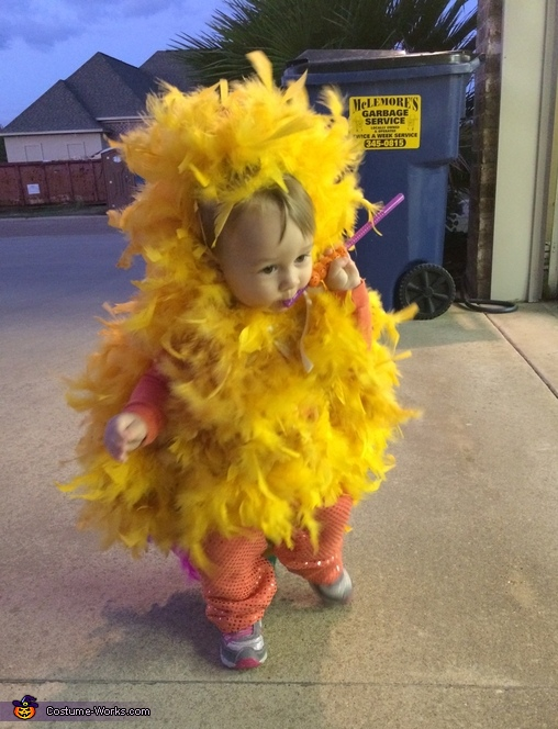 Ruby the Rooster Costume