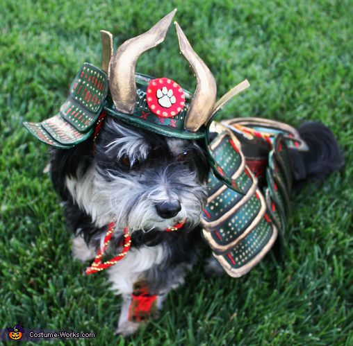 Rosco The Last Dog Samurai Costume
