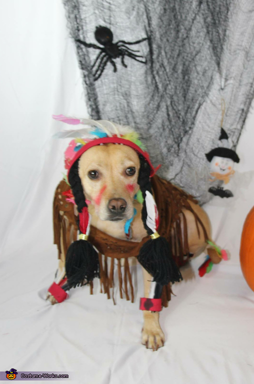 Rummy the Indian Squaw Costume