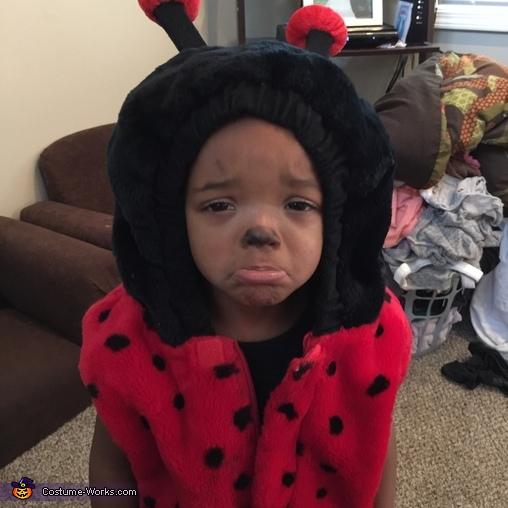 Sad Ladybug Costume