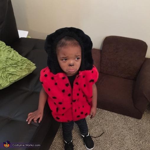Kari, Sad Ladybug Costume