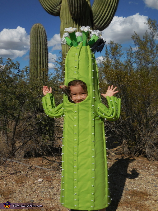 Saguaro Cactus Homemade Costume