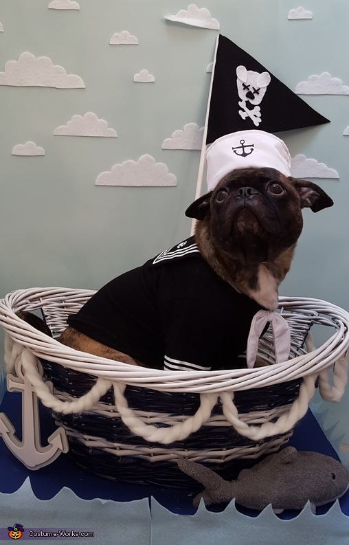 Sail away, Sailor and Shark Costume