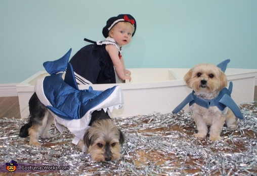 Sailor Baby and the Shark Dogs Costume