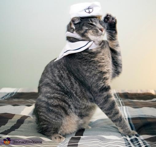 Sailor Cat Costume