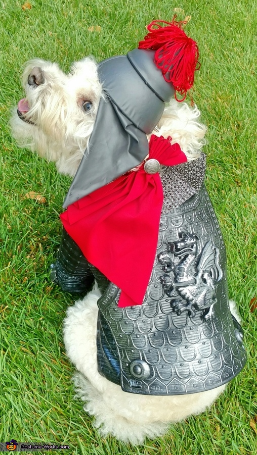 Saint George the Dragon Slayer Costume