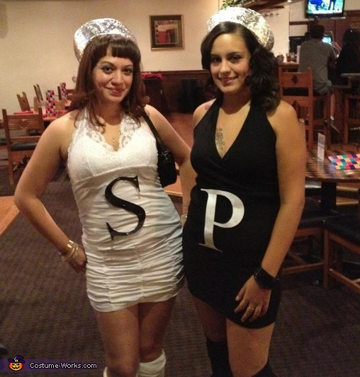 Salt and Pepper Costume