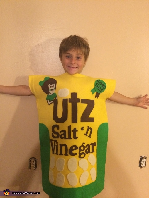 Salt and Vinegar Chips Homemade Costume