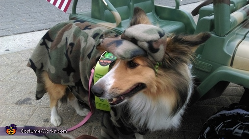 Abby, Salute our Troops Costume