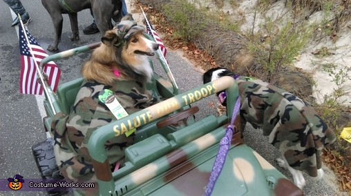 Salute our Troops Costume