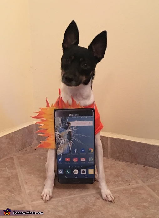 Samsung Galaxy Note 7 Costume