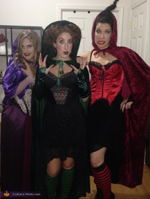 Sanderson Sisters from Hocus Pocus Group Costume
