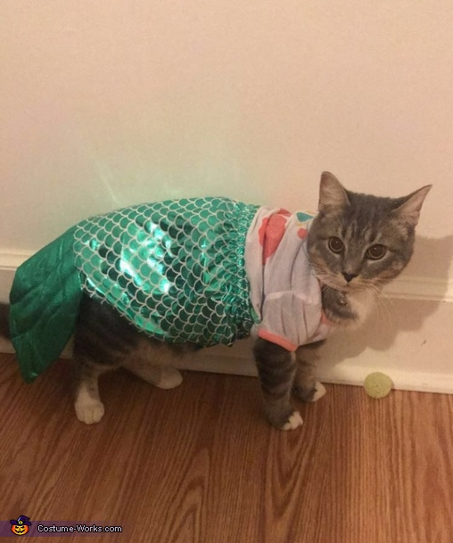 Sassy Mermaid Cat Costume
