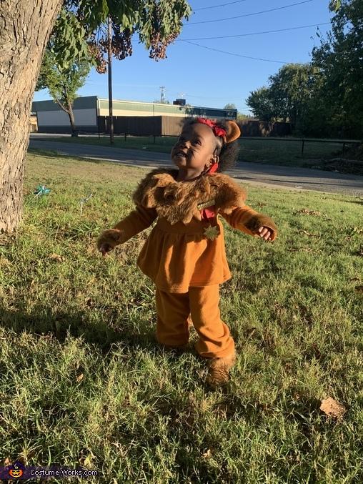 Savy Lion Costume