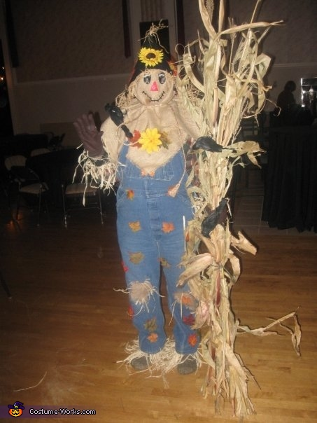 Scarecrow - Homemade costumes for adults