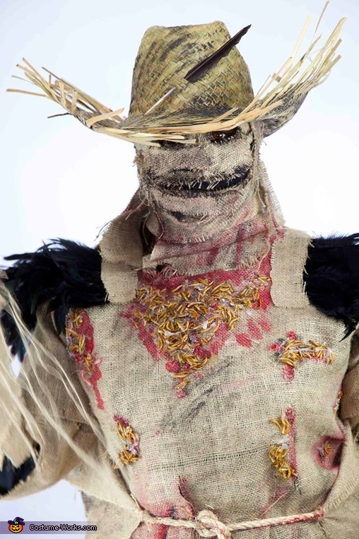 needs more aging/weathering, Scarecrow Costume
