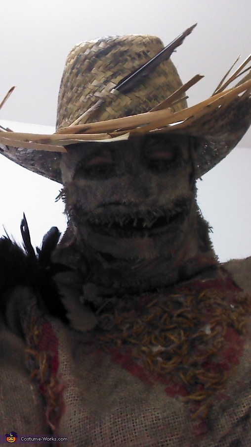 feather, Scarecrow Costume