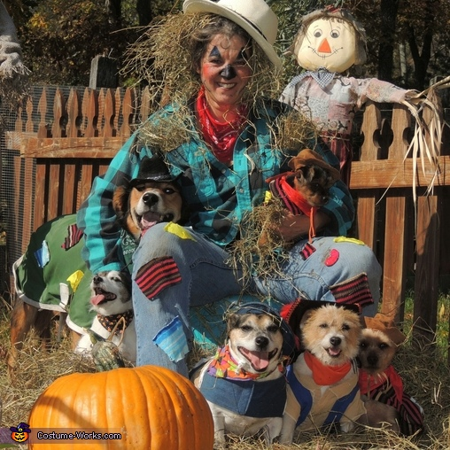 Scarecrow and Furry Friends Costume