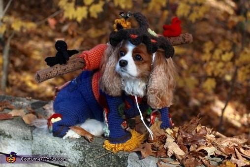 Cavalier, Scarecrow Roxie Costume