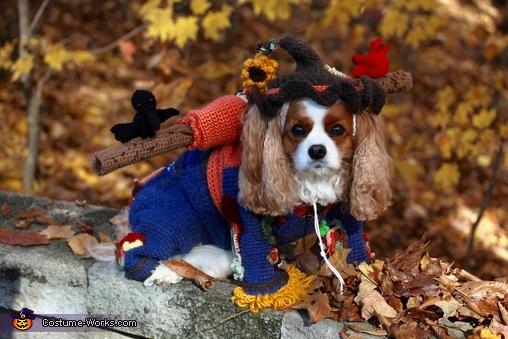 RGP, Scarecrow Roxie Costume