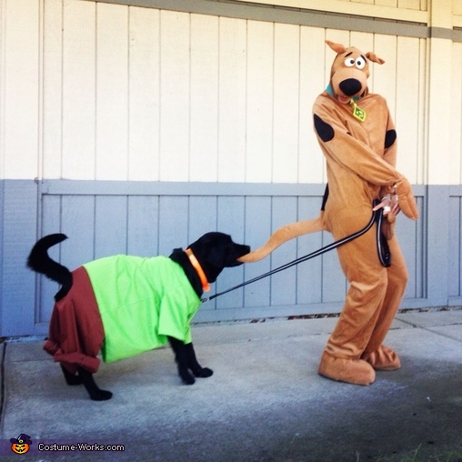 Scooby and Shaggy Costume