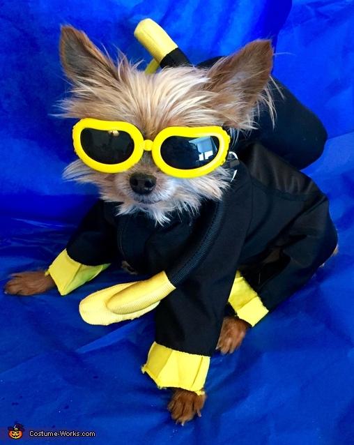 Scuba Dog Costume