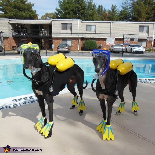 Scuba Dogs Costume