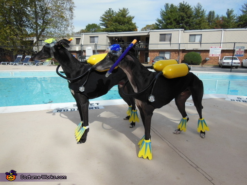 Scuba Dogs Homemade Costume