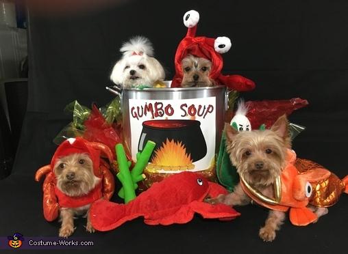 Seafood Gumbo Soup Costume