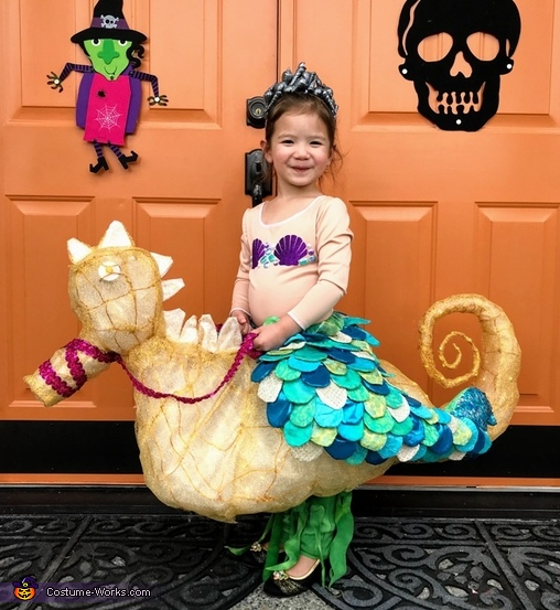 Seahorse-riding Mermaid Costume